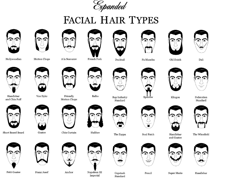 Different Facial Hair Styles Beards