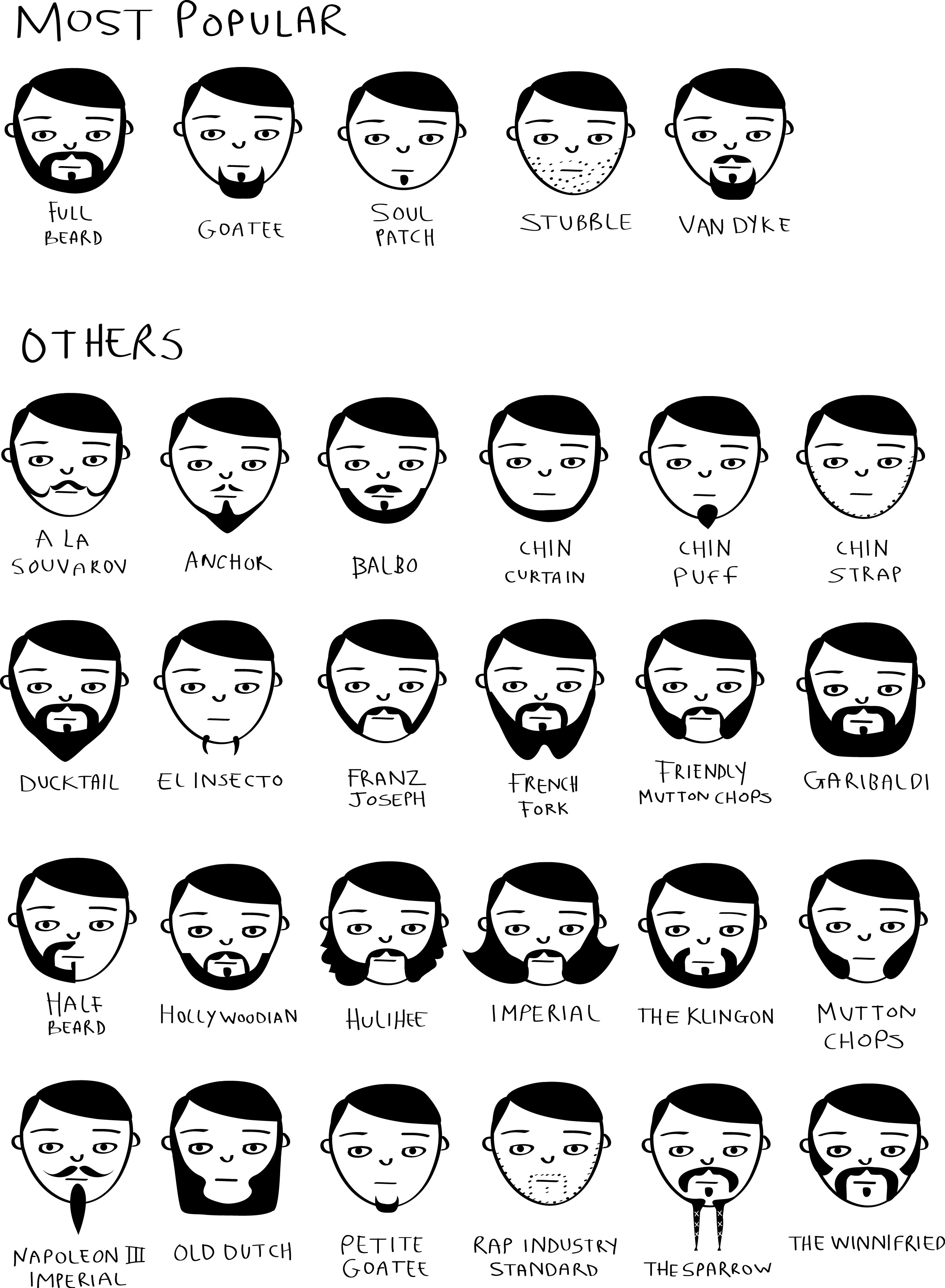different styles of facial hair with pictures movember beard styles 187 chartgeek 4336 | sketches1